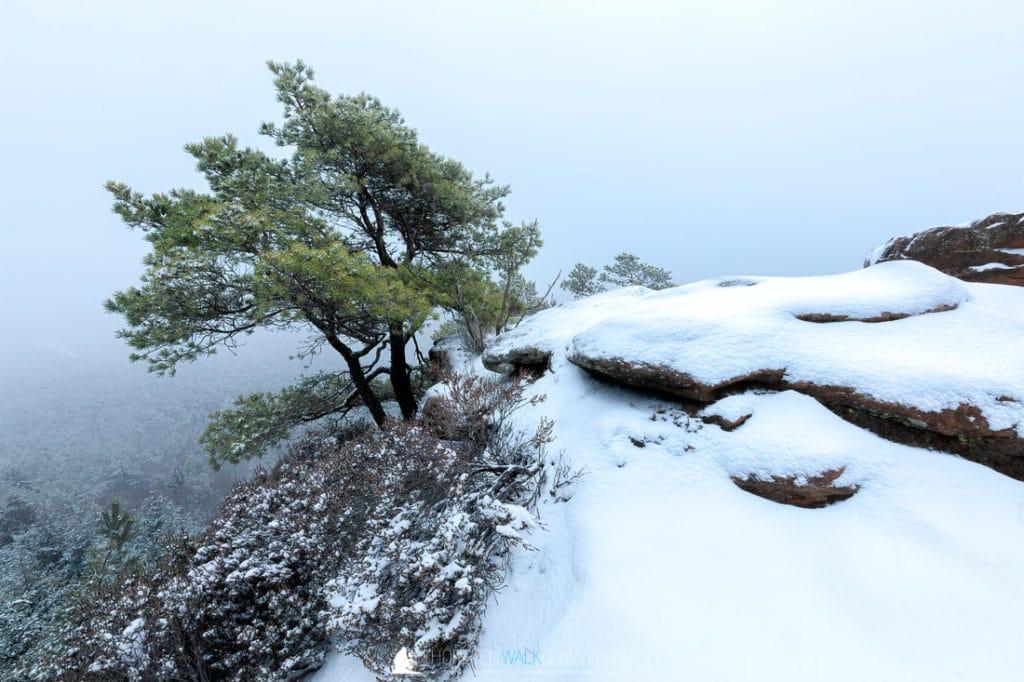 Im Winter auf dem Heidenpfeiler